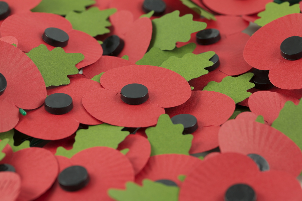 The only people offended by your poppy are hayfever sufferers with poor eye sight